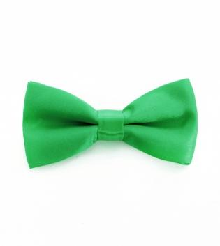 Papillon Raso Uomo Tinta Unita Verde Farfalla Cravattino Accessorio Elegante Look Casual GIOSAL
